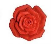 Griffaccessoires (Rose)