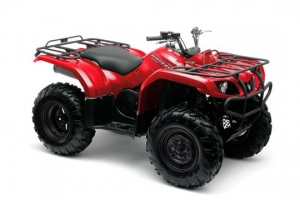 Yamaha ATV YFM 350 AN Grizzly 2WD rot